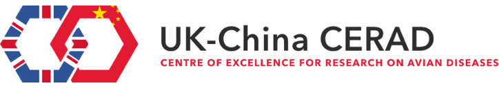UK-China Centre of Excellence for Research on Avian Diseases logo